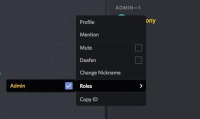 asignar roles en un servidor de discord